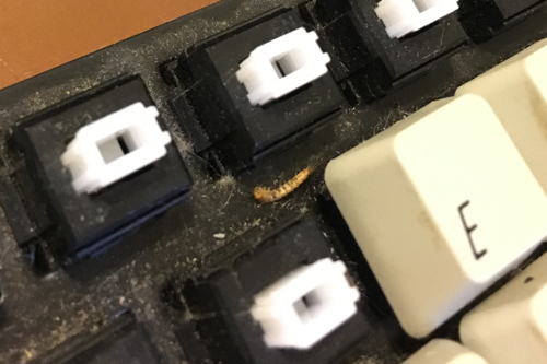 Bug found in adesso keyboard